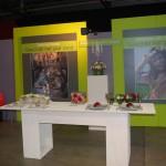 Limburghal 2010 stand bloemschikken