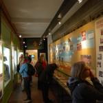 galerij 100 jaar scouts